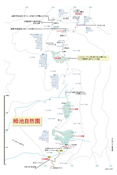 白馬栂池自然園map